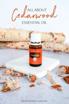All About Cedarwood Essential Oil - Recipes with Essential Oils Essential Oils For Teething, Essential Oils Energy, Essential Oils For Pregnancy, Essential Oils For Babies, Essential Oils For Anxiety, Cedarwood Essential Oil Uses, Essential Oil Candles, Diffuser Recipes, Holistic Remedies