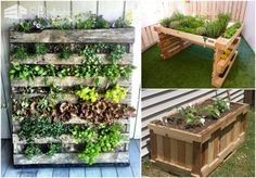 Summer 2017: Fun Outdoor DIY Home Projects with Pallets Lounges & Garden Sets Pallet Planters & Compost Bins Pallet Sheds, Pallet Cabins, Pallet Huts & Pallet Playhouses Pallet Terraces & Pallet Patios