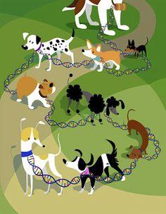 Art of Janice Rosenthal: doggies