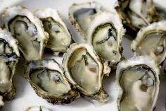 oesters zinkvoeding