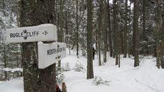 Sentier, mont Jackson, New Hampshire, USA, février 2017 New Hampshire, Jackson, Usa, Pathways, Jackson Family, U.s. States