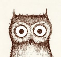 love this owl print.