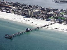 The Clearwater Beach Bus by Gray Line Orlando Tours lets you enjoy a day of full of swimming, water activities or just simple relaxation Clearwater Beach Pier 60, Tour Tickets, Water Activities, Orlando, Swimming, Lunch, Tours, Gray, Live