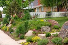 small residential berm at property line - Google Search