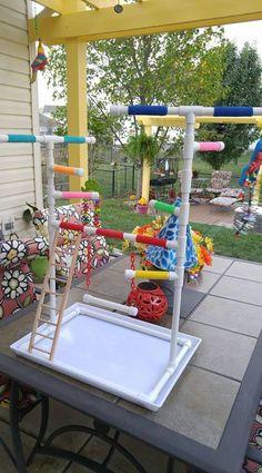 Diy Parrot Toys, Diy Bird Toys, Parrot Perch, Bird Perch, Bird Aviary, Cockatiel, Budgies, Parrots, Bird Play Gym