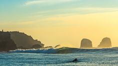 Donate to Help Protect Punta de Lobos—Por Siempre! Get involved, stay informed and spread the word.