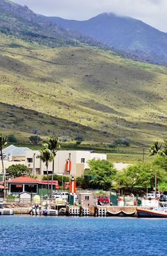 The harbor village of Maalaea on the West coast of Maui, Hawaii, is the departure point for many whale watching and snorkeling cruises, especially in winter.