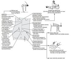 What To Do About Back Pain back pain in elderly the