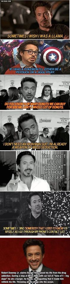 Robert Downey Jr. Everyone
