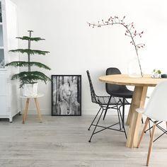 #kwantuminhuis Draadstoel NOLA > https://www.kwantum.nl/meubelen/stoelen @huisjevanjoliene