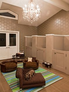 A room just for the pampered pooches! Complete with their own private kennels.