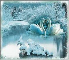 kış manzara fotoğrafları ile ilgili görsel sonucu