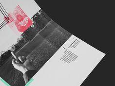 https://www.behance.net/gallery/22515707/OFF-Piotrkowska-Magazine