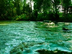 River Cauvery...somewhere interior Karnataka enroute Coorg, India