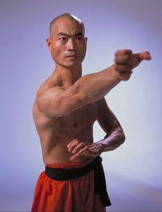 Bilderesultat for shi yan ming