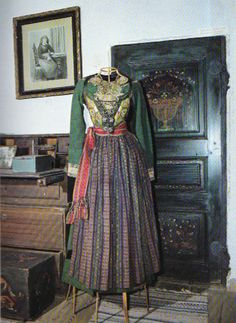 "Swedish folklore | Bara Härad, sydvästra skåne | Dress previously belonging to crown prinsess Margareta | (""Skånska Dräkter"", Gertrud Ingers, 1984) Folk Costume, Costumes, Strange Flowers, Antique Clothing, Traditional Dresses, Folklore, Sweden, American Girl, Retro Vintage"