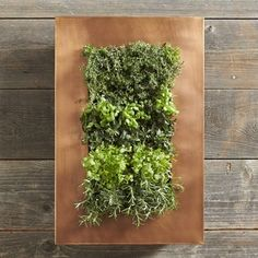 Copper Vertical Herb Planter from  Williams-Sonoma: Gorgeous but tiny. $232 for a tiny planter? Really?