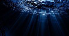 Nature: Fossa delle Marianne, 50 volte più inquinanti che nei fiumi cinesi