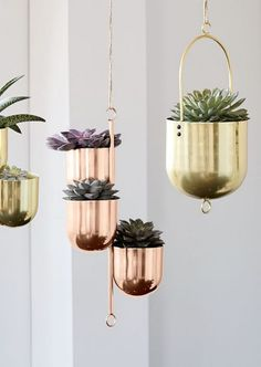 As much as I'm careful of their furniture I think they can rock it with some of their plant stuff at that West Elm ... These could be great in that corner of your dining room near the window ... do you think you would make the switch over to brass there?