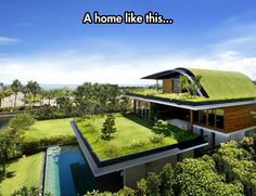 This Home Looks So Peaceful