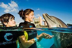 10 Best Family Vacations that Teach the Kids - Family Vacation Critic