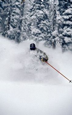 Skiing Fresh Deep Powder