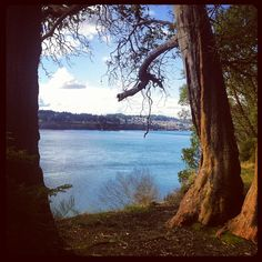A view from Point Definance Park in Tacoma, Washington ... click to buy the print!