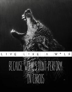 Wolves, Quotes