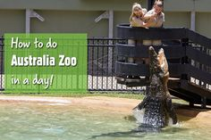 Use this awesome itinerary and map from a die-hard wildlife fan next time you visit Australia Zoo. Australia 2018, Coast Australia, Visit Australia, Queensland Australia, Western Australia, Australia Travel, Australia Honeymoon, Ways To Travel, Places To Travel
