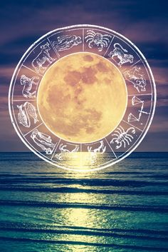 It's a good time to share ideas with like minds and to build new foundations. Click through for your weekly horoscope. Weekly Horoscope, Your Horoscope, Moon In Aquarius, Full Moon, Celestial, Outdoor, Harvest Moon, Outdoors, Outdoor Games