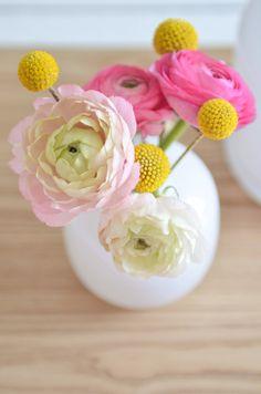 Spring (?)