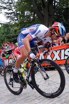 UCI World Championships 2015 Peter Sagan (Tim de Waele/TDWSport.com) Bike Poster, Sports Personality, Cycling Motivation, Bicycle Race, Cycling Tips, Bike Life, Sport Bikes, Courses, Road Bike