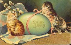 Vintage Easter Card - Cats & Egg