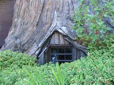1000 Images About Redwood Forest On Pinterest