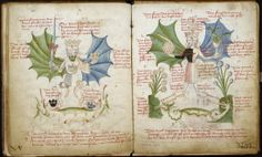 According to Carl Jung, rebis hermaphrodite symbolism represents the union of opposites. In the Archetypes of the Collective Unconscious, Carl Jung discusses hermaphrodite symbol… Carl G Jung, Jungian Psychology, Gustav Jung, Alchemy Art, Twin Souls, Illuminated Manuscript, Medieval Manuscript, Altered Books, Archetypes