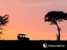 Enjoy a romantic and thrilling game drive at Plains Camp in Best Positions, Inspirational Wallpapers, Hd Desktop, Travel Images, Wallpaper S, Continents, Our Love, Beautiful Landscapes, Kenya Africa