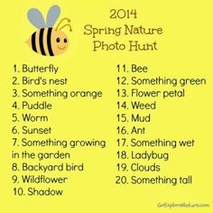 Spring Nature Photo Hunt