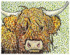 'Moody Cow' - watercolour & Indian Ink 5x7 Inches #highlandcow #pointillism