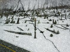 Photograph by Abelardo Morell Tower Hill in the snow, Yellowstone National Park, Wyoming