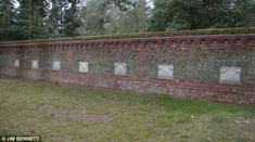 The Queen's Corgi graveyard: Tiny headstones of Royal pets that spent years as 'loyal companions' pictured in quiet corner of Sandringham | Daily Mail Online