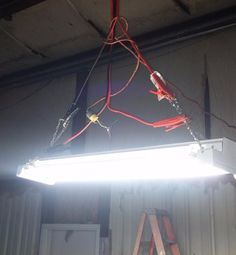 """The """"electrician"""" responsible for this health and safety hazard. 
