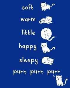 soft kitty, warm kitty, little ball of fur, happy kitty, sleepy kitty, purr purr purr... AWWW!!