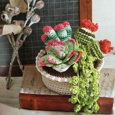 Amigurumi – Cactus Collection - Cactus Amigurumi (16) - Free Pattern