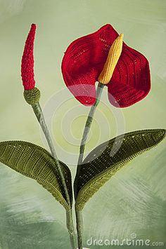 Crochet flower-Anthurium- by Gioncla, via Dreamstime