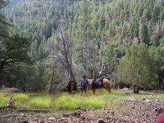 See beautiful backcountry on an Arizona horse back riding vacation