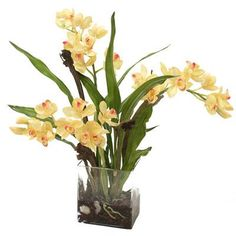 Features:  -Container material: Glass.  -Yellow orchid plant with blades and natrag.  -Cleans easily with a duster or dryer on cool setting.  -Made in the USA.  Product Type: -Flowers.  Color: -Yellow