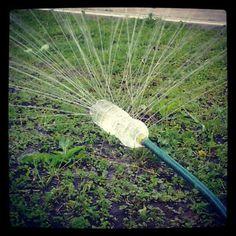 Mora em casa com jardim? Encontramos esta idéia para rapidamente molhar o jardim, sem gastar muita água.