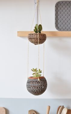 coconut shell plant hanger - The Sunday Market