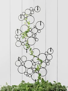 I think this could be done with PVC - cut the pipe, glue together and position!!! Circle Wall Trellis