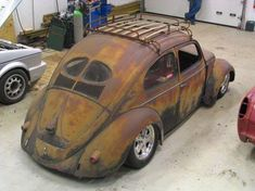 Split Oval Window Bug, painted by Mother Nature (Patina)